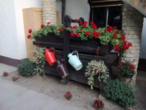 Roljka kao ukras bašte
