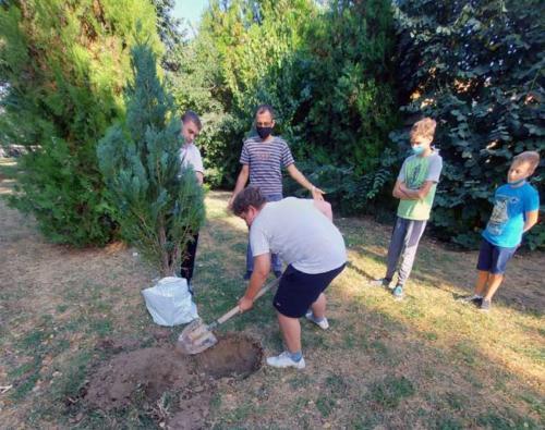 Dan sadnje drveća